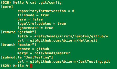 Git config file