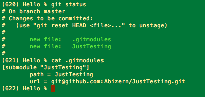 Result of git status